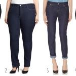 Best Plus Size Skinny Jeans