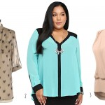 Cute Plus Size Clothes: The Chiffon Blouse