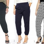 Plus Size Fashion 2014 – The Soft Tapered Pant