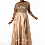 Best Plus Size Prom Dresses 2015